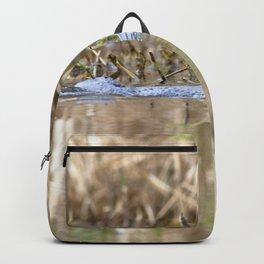 Watercolor Alligator 03, Okefenokee Swamp, Geogia, Peek-A-Boo! Backpack