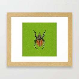 Scarabee vert Framed Art Print