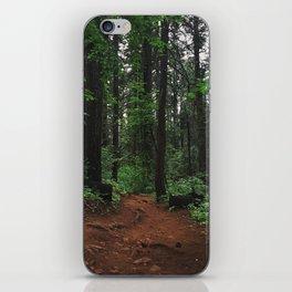 June Trail iPhone Skin