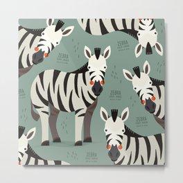 Zebra, African Wildlife Metal Print