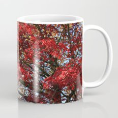 Fall maple trees of red leaves, in blue sky.  nature landscape photography. Mug