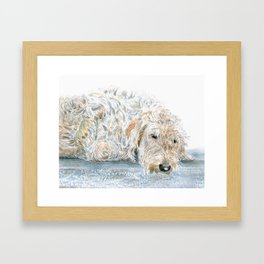 Sleeping Labradoodle Framed Art Print
