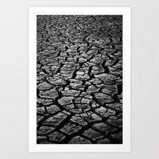 Cracked Monochrome Art Print