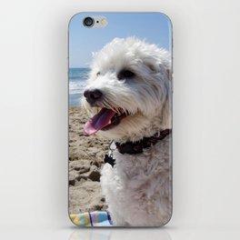 Max at the Beach iPhone Skin