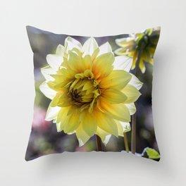 Dahlia In The Garden / 30 Throw Pillow