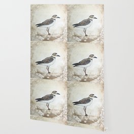 Plover Wallpaper