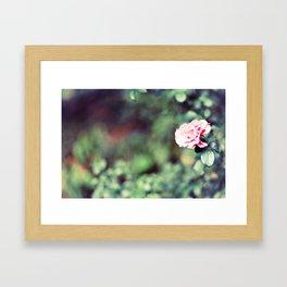 The flowers bloom for You Framed Art Print