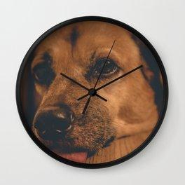 Sad Princess Dog Wall Clock