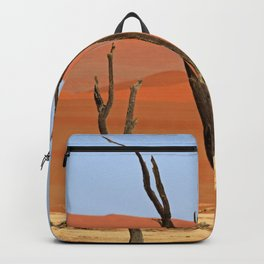 Deadvlei Backpack