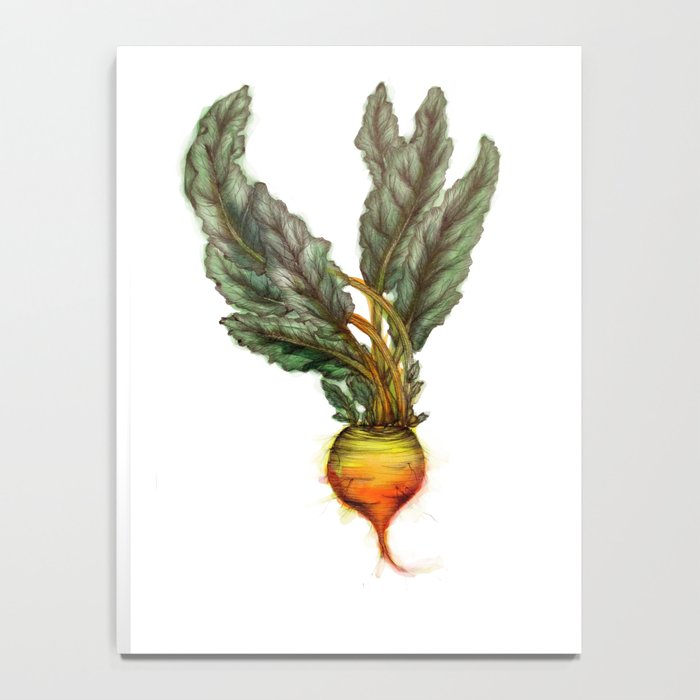 Rooted: The Golden Beet Notebook