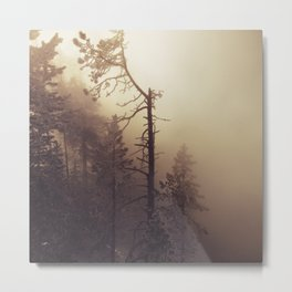 Sunrise Frost and Fog Metal Print