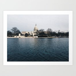 capitol pond Art Print