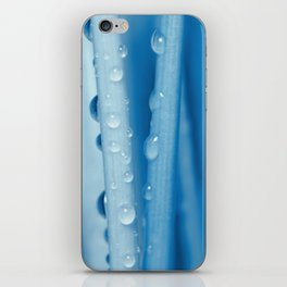 Blue grass 33 iPhone Skin