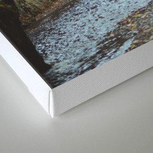 Oneonta Gorge Canvas Print