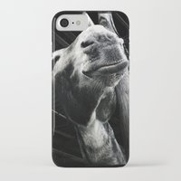 donkey iPhone & iPod Cases featuring donkey by chicco montanari