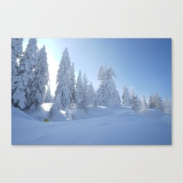 After the Blizzard Canvas Print
