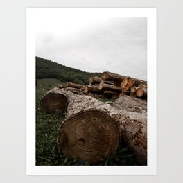 Dans els bois Art Print
