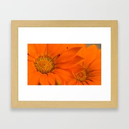 Double orange. Framed Art Print