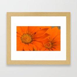 Double orange. Framed Art Print