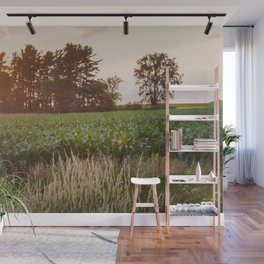 Sunsets and Corn Fields Wall Mural