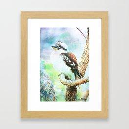 Laughing Kookaburra Framed Art Print