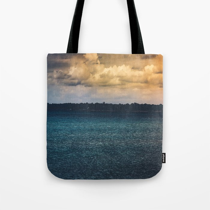 I Gave You Everything Tote Bag