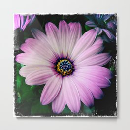 LILAC DAISY - Spring is coming #1 Metal Print