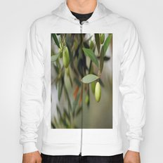 Olives On A Branch Hoody
