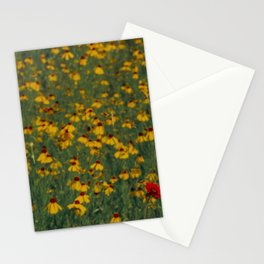 Beautiful Blooming Texas Wildflowers in Spring Stationery Cards