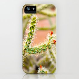 Tiny Baby Cactus With Red Flowers iPhone Case