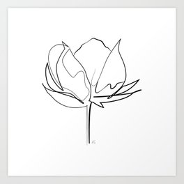 """ Botanical Collection "" - Cotton Plant Art Print"