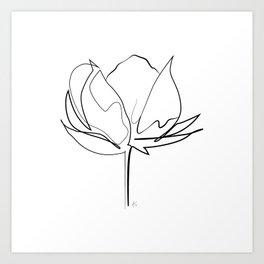 """ Botanical Collection "" - Cotton Plant Art Print"