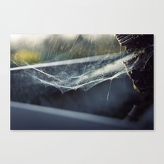 Before the Crawl Canvas Print
