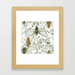 Cicadas and Orchids Framed Art Print