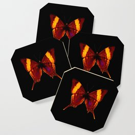 Butterfly - Vibrant Glow - Orange Brown Yellow Black Coaster