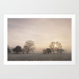 Sunrise through fog on a frosty morning. Santon Downham, Norfolk, UK. Art Print