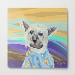 Chinese Crested in her PJ's Metal Print