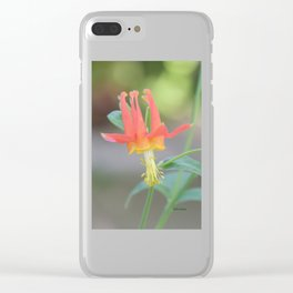 Pastel Columbine Afternoon Clear iPhone Case
