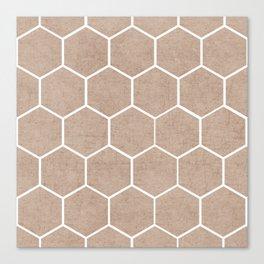 natural hexagon Canvas Print