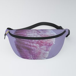 Seagull Fanny Pack