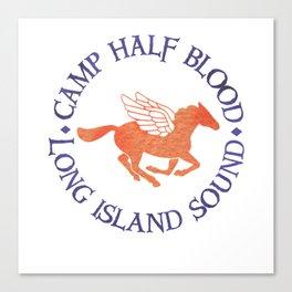 camp half blood long island Canvas Print