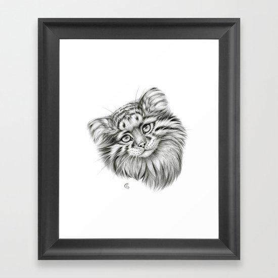 Pallas's Cat G2012-51 Framed Art Print