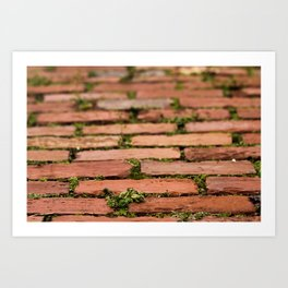 Brick by brick Art Print