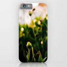 the enlightenment iPhone 6s Slim Case