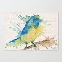 Euphonia bird in watercolor pencils Canvas Print