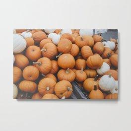 Oh My Gourd(s) Metal Print