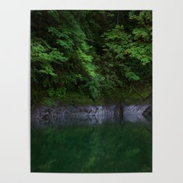 A Magical Pool in the Forest Poster