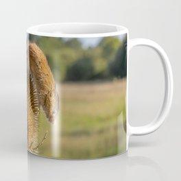 Can i help you. Coffee Mug