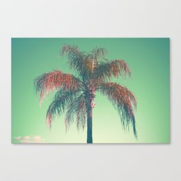 Red palm tree Canvas Print