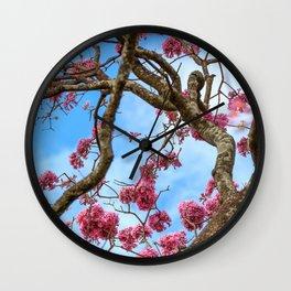 Ipê Wall Clock